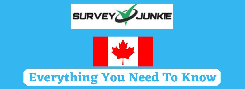 survey junkie canada review